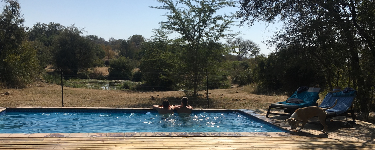 #pool #waterhole #elephants #masodini